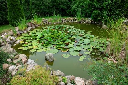 Prachtige klassieke tuin visvijver met bloeiende waterlelies tuinieren achtergrond