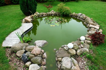 garden pond: Beautiful classical design garden fish pond in a well cared backyard gardening background