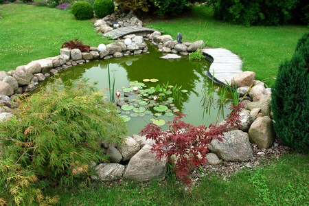 Beautiful classical design garden fish pond in a well cared backyard gardening background photo