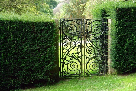Classical design black wrought iron gate in a beautiful green garden photo