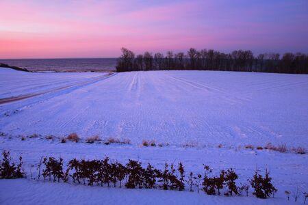 Beautiful dramatic winter sunset over snow field, trees and the ocean Stock Photo - 12419003