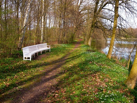 Beautiful classical design nature park garden wood bench seating corner     photo