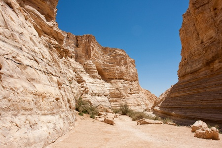 canyon negev: Canyon with beautiful rocks formations Negev desert in Israel