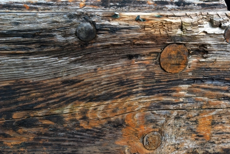 Aged old textured wood pattern surface with copper nails  background