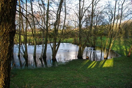 Beautiful small pond lake with trees around nature background Stock Photo - 17085717