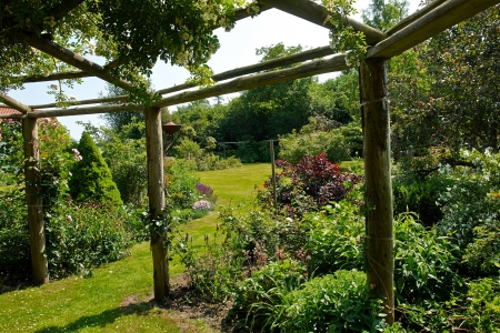 Wooden pergola gazebo in a beautiful blooming garden full of flowers and green plants photo