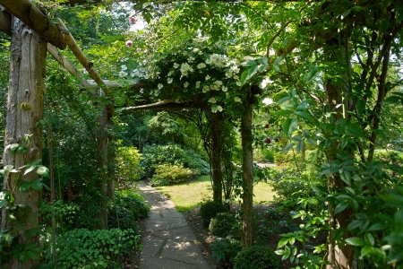 entrance arbor: Beautiful gardening project - creative garden tunnel archway in a classical garden