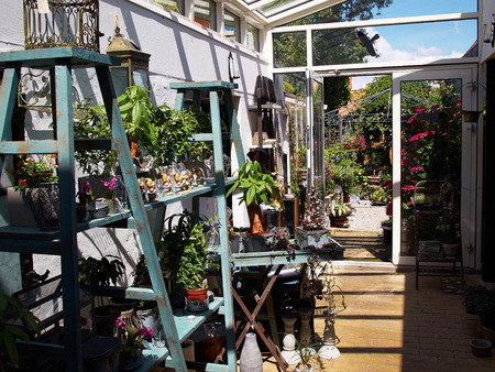 sufficiency: Inside classical garden conservatory greenhouse in a beautiful home garden