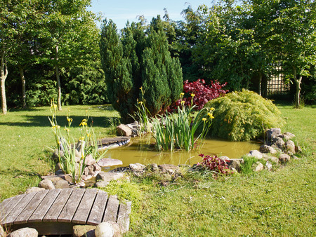 arden: Beautiful classical garden fish pond surrounded by grass gardening background