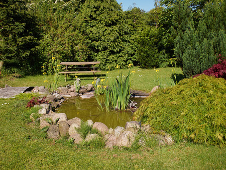 back yard pond: Beautiful classical garden fish pond surrounded by grass gardening background