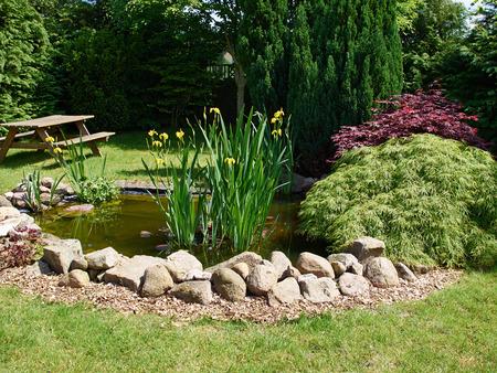 잔디 정원 배경으로 둘러싸인 아름다운 클래식 정원 물고기 연못 스톡 콘텐츠