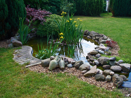 ornamental garden: Beautiful classical garden fish pond surrounded by grass gardening background