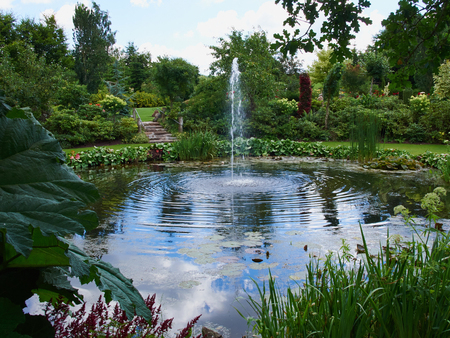 ornamental garden: Ornamental pond and water fountain in a beautiful creative lush green blooming garden