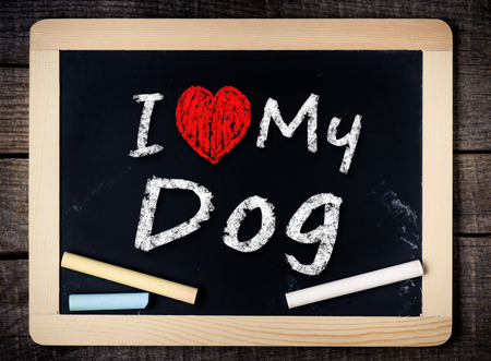 I love my Dog written with chalk on the school blackboard on wood background