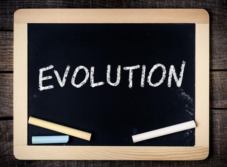 Evolution on a blackboard on wooden background