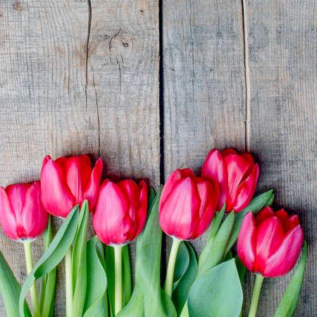 tulipan: Tulipany na antyczne drewnianym tle