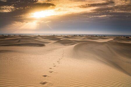 Beautiful sand dunes view. Maspalomas dunes.