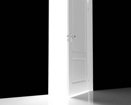 High resolution image  door. 3d illustration over  white backgrounds. illustration