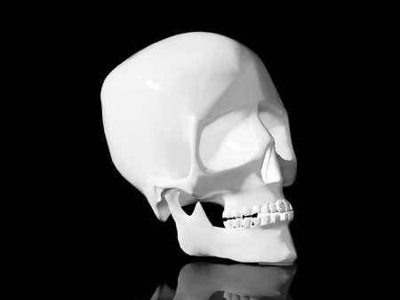 High resolution image white skull. 3d illustration over  white backgrounds. illustration