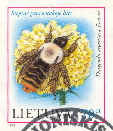 The scanned stamp. The Lithuanian stamp. Bee on a flower. photo