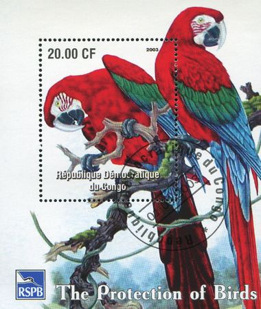 CONGO -CIRCA 2003: Six stamps with parrots, circa 2003. Stock Photo