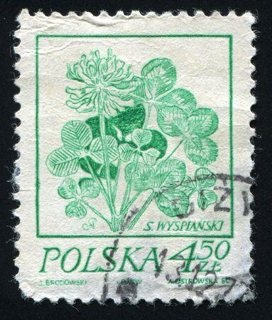 philatelic: POLAND -CIRCA 1980: Green plant isolated on white, circa 1980.