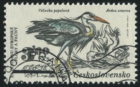 czechoslovakia: CZECHOSLOVAKIA - CIRCA 1983: stamp printed by Czechoslovakia, shows heron and chicken, circa 1983.