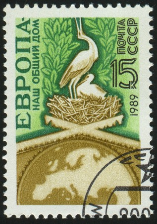 stamp printed by Russia, shows storks in nest , circa 1989. photo