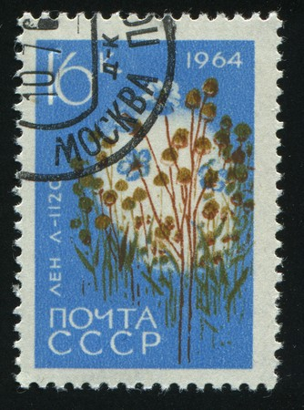 RUSSIA - CIRCA 1964: stamp printed by Russia, shows flax, circa 1964. photo