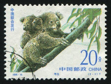 CHINA - CIRCA 1995: The Australian bear the koala,  circa 1995. photo