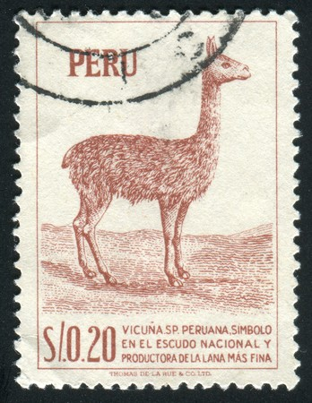 PERU - CIRCA 1979: llama is a South American camelid, widely used as a pack and meat animal by Andean cultures since pre-hispanic times, circa 1979. photo