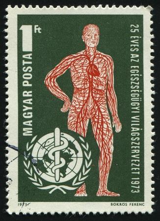 HUNGARY - CIRCA 1973: Vascular System and WHO Emblem, circa 1973. photo