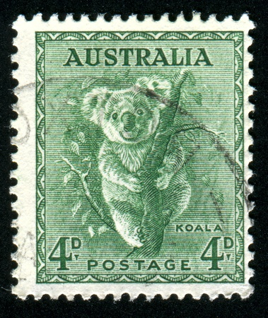 AUSTRALIA - CIRCA 1937: stamp printed by Australia, shows koala, circa 1937