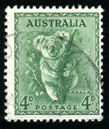 Australien - CIRCA 1937: Briefmarke von Australien, Shows Koala, circa 1937 gedruckt Standard-Bild - 8479977