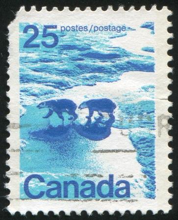CANADA - CIRCA 1972: stamp printed by Canada, shows Polar bears, circa 1972 Stock Photo - 8608547
