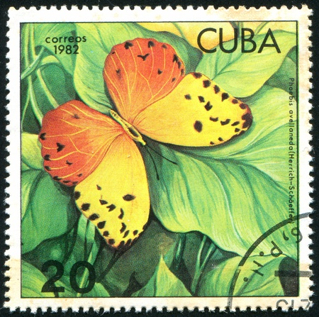 cuba butterfly: CUBA - CIRCA 1982: stamp printed by Cuba, shows butterfly, circa 1982 Stock Photo