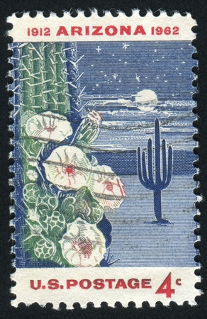UNITED STATES - CIRCA 1962: stamp printed by United states, shows Giant Saguaro Cactus, Arizona Statehood, circa 1962 photo