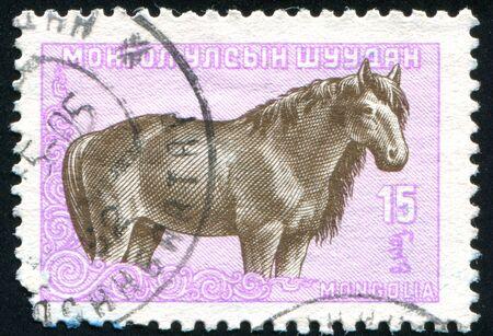 mongolia horse: MONGOLIA - CIRCA 1958: stamp printed by Mongolia, shows horse, circa 1958.