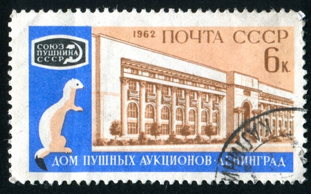 gronostaj: RUSSIA - CIRCA 1962: stamp printed by Russia, shows Auction Building and Ermine, circa 1962. Zdjęcie Seryjne
