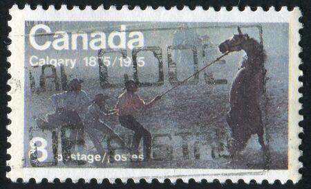 CANADA - CIRCA 1975: stamp printed by Canada, shows �Untamed� (Wild Horse, Race), circa 1975 photo