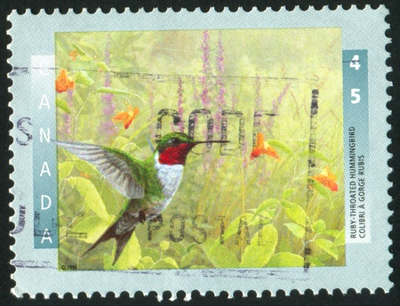 canada stamp: CANADA - CIRCA 1996: stamp printed by Canada, shows Ruby-throated hummingbird, circa 1996