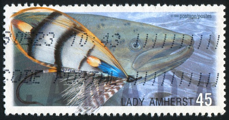 CANADA - CIRCA 1998: stamp printed by Canada, shows Fly Fishing in Canada, Lady Amherst, Atlantic salmon, circa 1998 photo