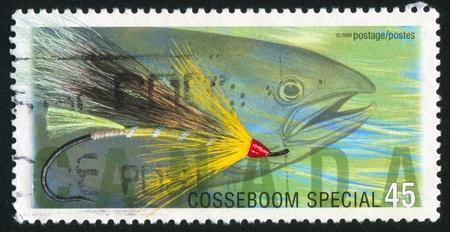 CANADA - CIRCA 1998: stamp printed by Canada, shows Fly Fishing in Canada, Cosseboom special, Atlantic salmon, circa 1998 photo