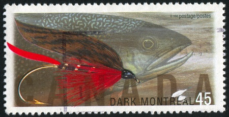 canada stamp: CANADA - CIRCA 1998: stamp printed by Canada, shows Fly Fishing in Canada, Dark Montreal, brook trout, circa 1998