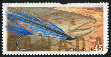 CANADA - CIRCA 1998: stamp printed by Canada, shows Fly Fishing in Canada,Coho blue, Coho salmon, circa 1998 photo