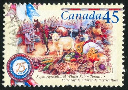 CANADA - CIRCA 1997: stamp printed by Canada, shows 75th Royal Agriculture Winter Fair, Toronto, circa 1997 photo