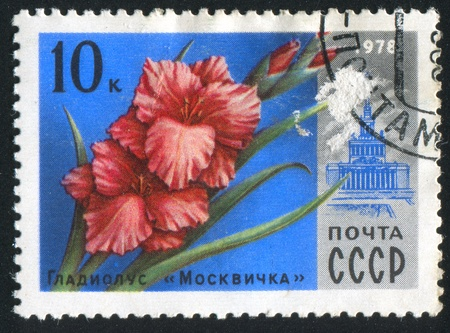RUSSIA - CIRCA 1978: stamp printed by Russia, shows Gladiolus Moscovite and VDNH Building, circa 1978. photo