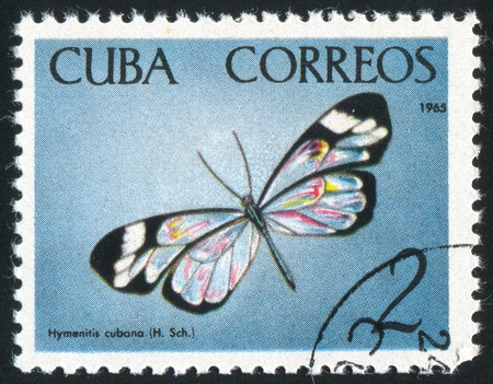 cuba butterfly: CUBA - CIRCA 1965: stamp printed by Cuba, shows butterfly, circa 1965