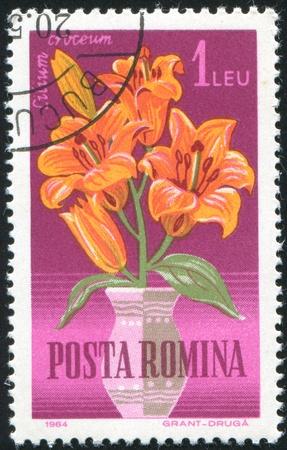 ROMANIA - CIRCA 1964: stamp printed by Romania, show flower Lily, circa 1964. Stock Photo - 10071780