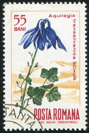 ROMANIA - CIRCA 1967: stamp printed by Romania, show Columbine, circa 1967. Stock Photo - 10071819